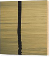 Tranquil Reflections Wood Print by Tom Rickborn