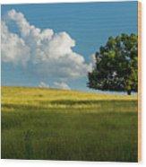 Tranquil Solitude Billowing Clouds Oak Tree Field Art Wood Print