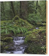 Tranquility In The Forest Wood Print