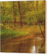 Tranquility Stream - Allaire State Park Wood Print