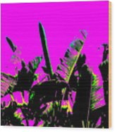 Transgenesis Wood Print by Eikoni Images
