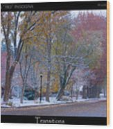 Transitions Autumn To Winter Snow Poster Wood Print