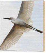 Transluscent Egret In Flight . 40d4992 Wood Print