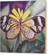 Transparent Butterfly Wood Print