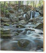 Trap Falls In Spring 3 Wood Print