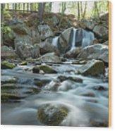 Trap Falls In Spring 4 Wood Print