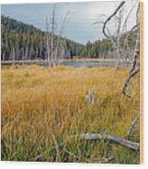 Trap Lake Co Wood Print by James Steele