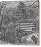Trapping Wild Turkeys, 1868 Wood Print