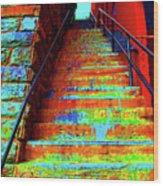 Travel-exorcist Steps Wood Print
