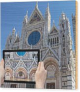 Travel To Siena Concept Wood Print