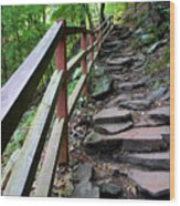 Treacherous Hike Wood Print