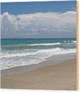 Treasure Coast Beach Florida Seascape C4 Wood Print