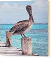 Treasure Coast Pelican Pier Seascape C1 Wood Print