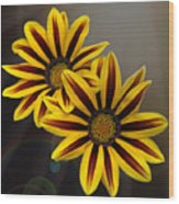 Treasure Flowers With Light Flares Wood Print