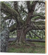 Treaty Oak 12 14 2015 027 Wood Print