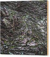 Treaty Oak 12 14 2015 038 Wood Print
