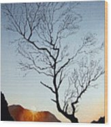 Tree Above Crummock Water Wood Print
