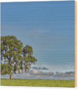 Tree Above The Clouds Wood Print