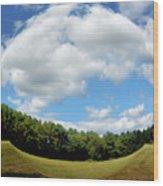 Tree And Blue Sky Wood Print