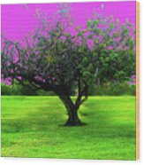 Tree And Color Wood Print