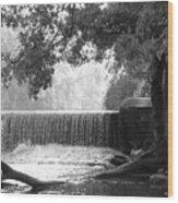Tree And Dam Wood Print
