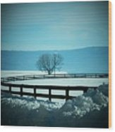 Tree And Fence In Snow Wood Print