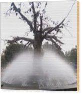 Tree And Fountain Wood Print