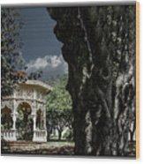 Tree And Gazebo Wood Print