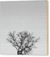 Tree And Moon Wood Print
