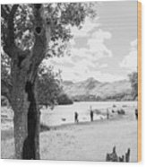 Tree And People By The Lake Wood Print