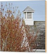Tree And School House 795 Wood Print