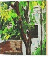 Tree And Shade Wood Print