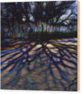 Tree And Shadow Wood Print