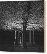 Tree And Swing Wood Print