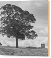 Tree And The Cage Tower In The Distance In Lyme Park Estate In B Wood Print
