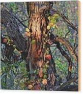 Tree And Vine Wood Print