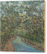Tree Arched Road Wood Print