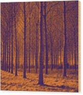 Tree Art 56y Wood Print
