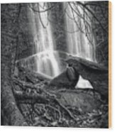 Tree At Falls In Black And White Wood Print