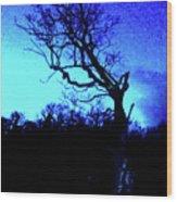 Tree At Night Wood Print