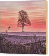 Tree At Sunrise Eaton Rapids Wood Print
