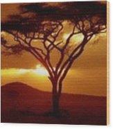 Tree At Sunset. L B Wood Print