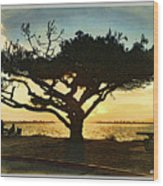Tree At Vacation Island Wood Print