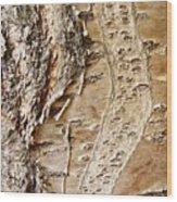 Tree Bark 9 Wood Print
