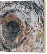 Tree Bark Wood Print
