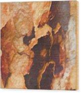Tree Bark Collection # 50 Wood Print