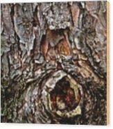 Tree Bark With Knothole Wood Print