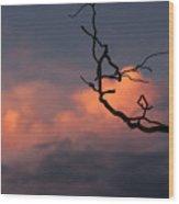 Tree Branch At Sunset Wood Print