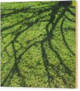 Tree Branch Shadow Wood Print