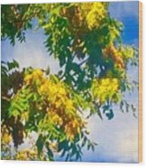 Tree Branch With Leaves In Blue Sky Wood Print